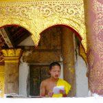 monk-study